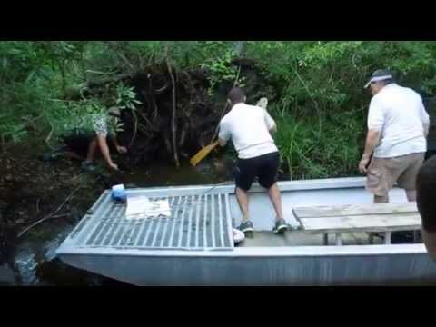 Catching an Alligator Snapping Turtle on a Jean Lafitte Swamp Tour Part One