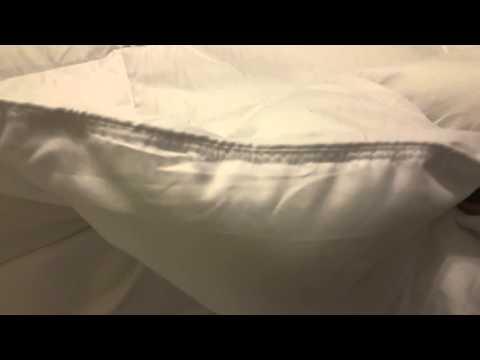 Linen Home Pro Down Alternative Comforter - Review