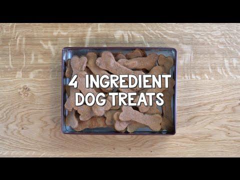 Easy 4 Ingredient Dog Treats - DIY$ by Perk