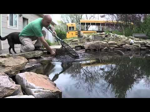 MuddaEarth.....2015 Koi Pond Cleanup