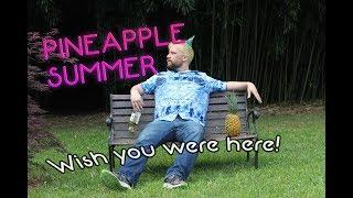 "Internet Comment Etiquette: ""Goodbye Pineapple Summer"""
