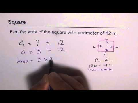 104 Find Area of Square from Given Perimeter