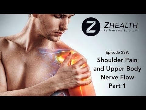 Shoulder Pain and Upper Body Nerve Flow Part 1
