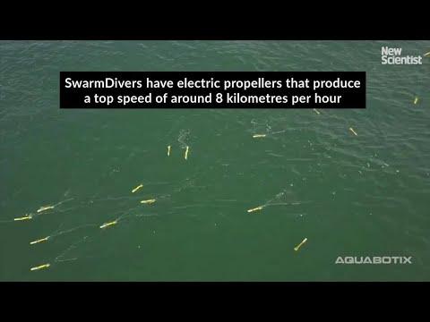 Underwater drone swarm