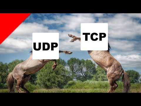 Basic Understanding of TCP vs UDP with Forge Networking