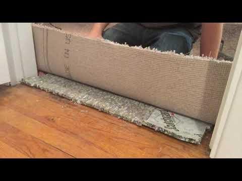 Carpet To Hardwood Transition, floor transitions carpettoolz.com