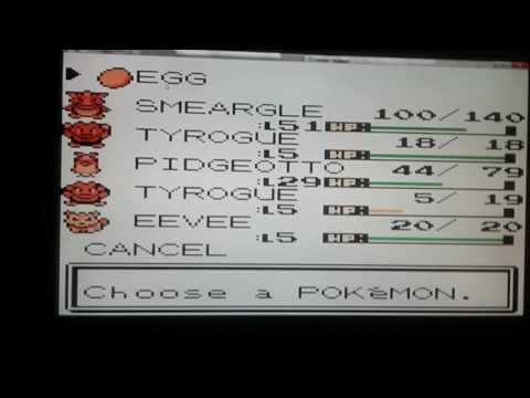 Pokemon silver egg hatching the easy way