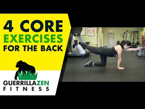 Low Back Pain | 4 ESSENTIAL Core Exercises to Protect Your Back!